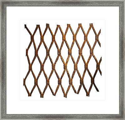 Rusty Wire Mesh Framed Print by Tony Cordoza