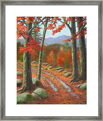 Autumn Rutted Road Framed Print