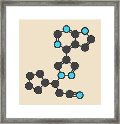 Ruxolitinib Cancer Drug Molecule Framed Print by Molekuul