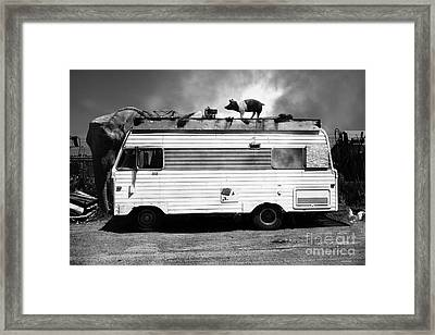 Rv Trailer Park 5d22705 Black And White V2 Framed Print by Wingsdomain Art and Photography