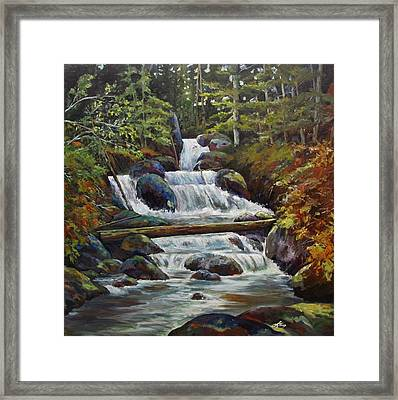 Ryans Falls Framed Print by Suzanne Tynes