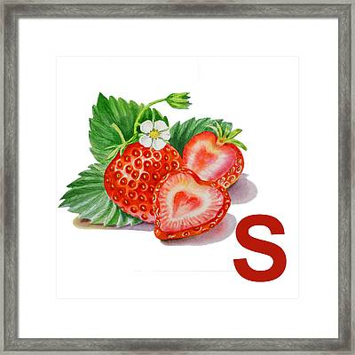 S Art Alphabet For Kids Room Framed Print by Irina Sztukowski