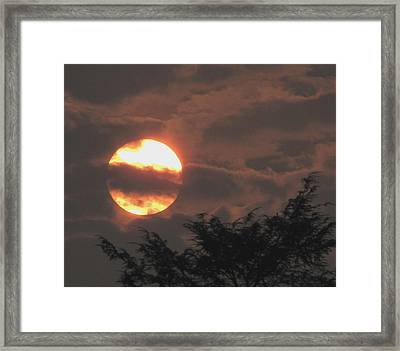 Framed Print featuring the photograph S2 by Melissa Stoudt