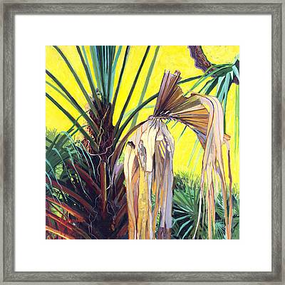 Sabal Framed Print