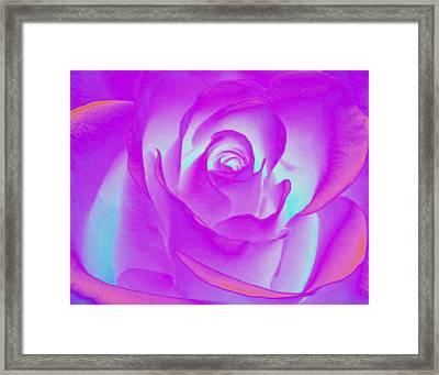Sabattier Rose Framed Print