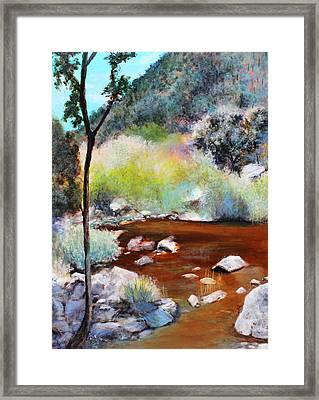 Sabino Canyon Scenes 2 Framed Print