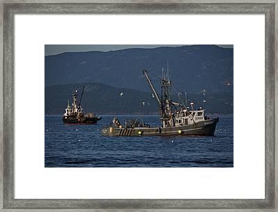 Sable Lady Framed Print by Randy Hall