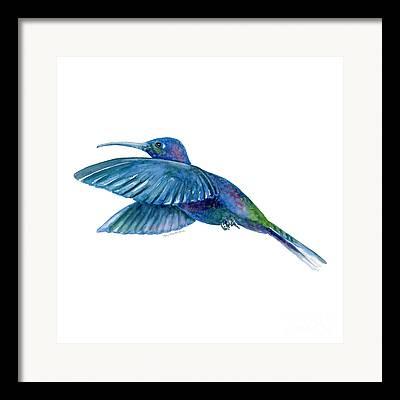 Small Birds Framed Prints