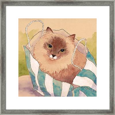 Sacked Kitty Framed Print by Tracie Thompson