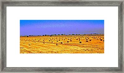 Sacramento Delta Farm Framed Print