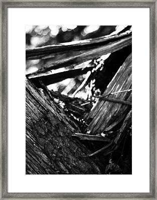 Sacred Geometry - The Triangle Framed Print by Rebecca Sherman