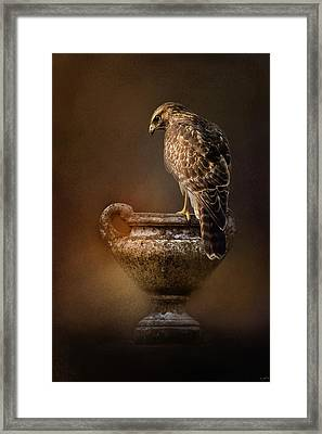 Sacred Moment Framed Print by Jai Johnson