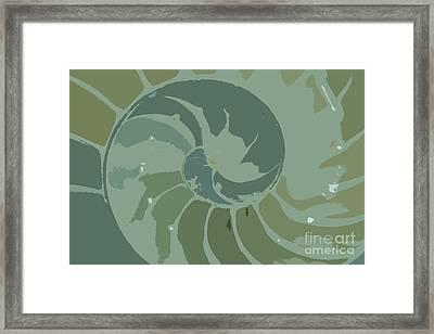 Sacred Spiral 5b Framed Print