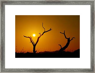 Sacrifice Framed Print by Chad Dutson