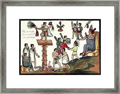 Sacrifice Of An Aztec Noble Framed Print by Library Of Congress