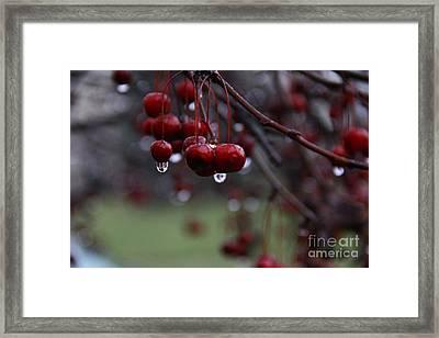 Sad Baby Berry Framed Print