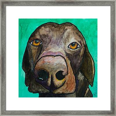 Sad Eyes Framed Print by Roger Wedegis