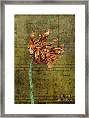 Framed Print featuring the digital art Sad Song by Shirley Mangini
