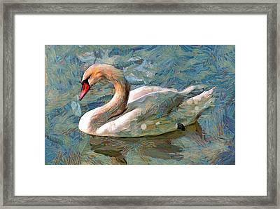 Sad Swan Framed Print