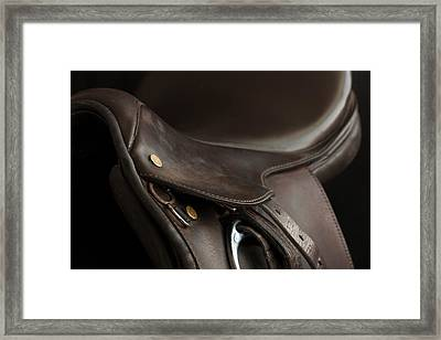Saddle 1 Framed Print