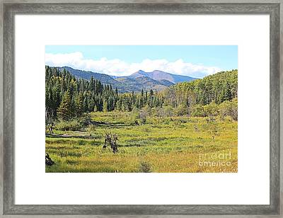 Framed Print featuring the photograph Saddle Mountain by Ann E Robson