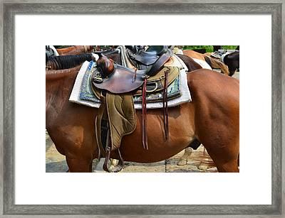 Saddle Up Partner Framed Print