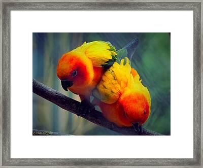 Safari Birds Framed Print by Sarode Nimmanwattana