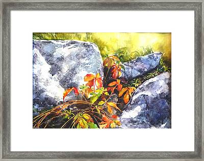 Safe Haven Framed Print by Betty M M   Wong
