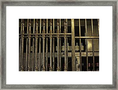 Safe Keeping Framed Print by Image Takers Photography LLC - Carol Haddon
