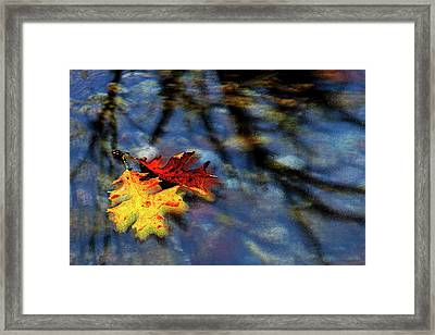 Framed Print featuring the digital art Safe Passage by Chuck Mountain