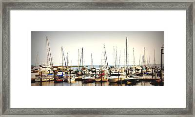 Safe Resting Place Framed Print by Reid Callaway