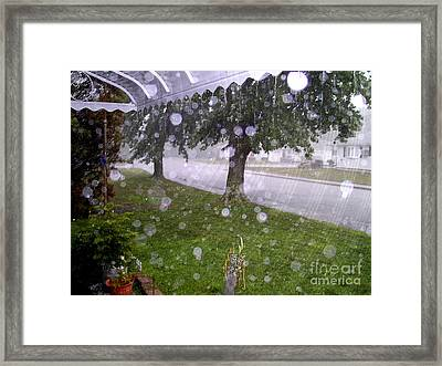 Framed Print featuring the photograph Safen Haven by Desline Vitto