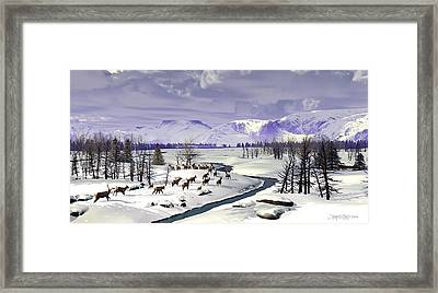 Safety In Numbers Framed Print by Dieter Carlton