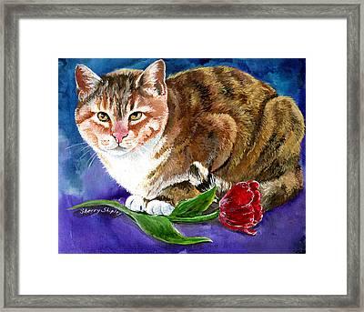 Saffron Framed Print by Sherry Shipley