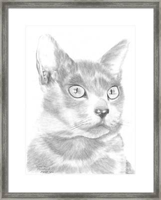 Saffy Framed Print