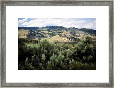 Sagebrush Framed Print