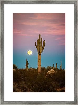 Saguaro Moonrise Framed Print by Erica Hanks