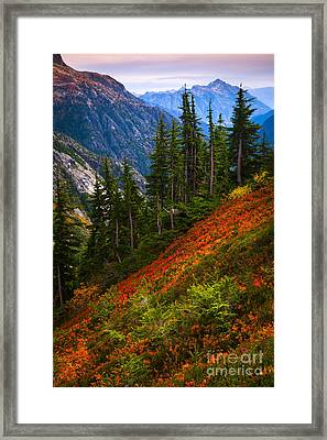 Sahale Arm Framed Print by Inge Johnsson