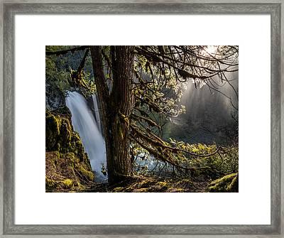 Sahalie Falls Morning Framed Print