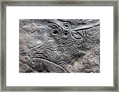 Saharan Cow Rock Carving Framed Print