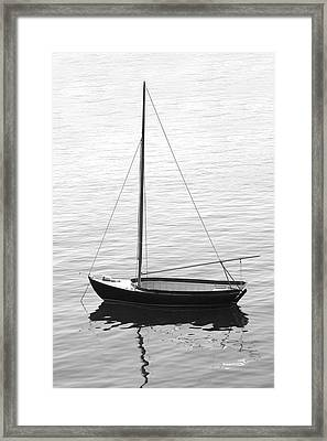 Sail Boat In Maine Framed Print