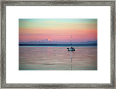 Sailboat In The Sunset. Framed Print