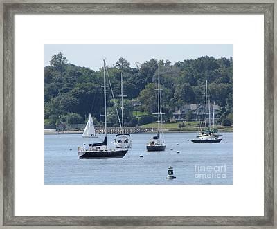 Sailboat Serenity Framed Print by Debbie Nester
