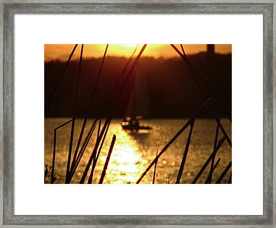 Sailboat Framed Print by Snow  White