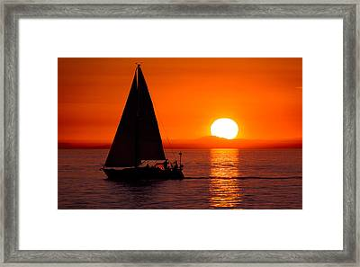 Sailboat Sunset Framed Print by Alexis Birkill