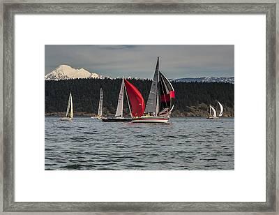 Sailboats And Mt Baker Framed Print