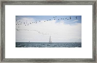 Sailboats Cruise The Waters Of Lake Framed Print