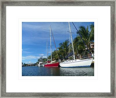 Sailboats  Framed Print by Dianne  Lacourciere