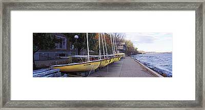 Sailboats In A Row, University Framed Print