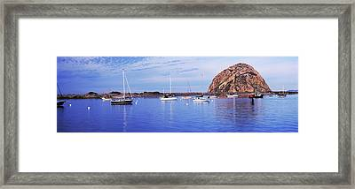 Sailboats In An Ocean, Morro Bay, San Framed Print